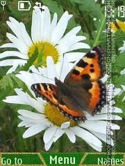 Butterflies theme screenshot