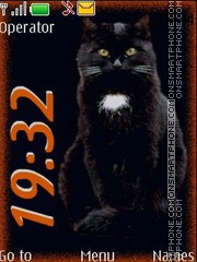 Black cat swf theme screenshot