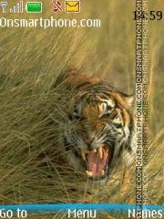 Aggressive Tiger theme screenshot