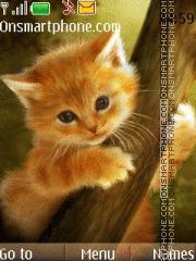 Скриншот темы Cute Cat 08