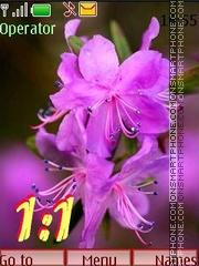 Summer flowering swf 12 pict theme screenshot