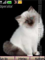 Kittens anim swf theme screenshot