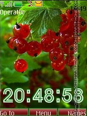 Berries swf tema screenshot