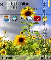 Скриншот темы Sunflower 10