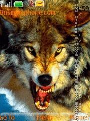 Wolf 08 es el tema de pantalla