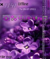 Purple Orchid tema screenshot