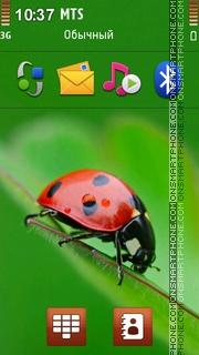 Ladybug 02 theme screenshot