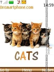 Cats - BLV es el tema de pantalla