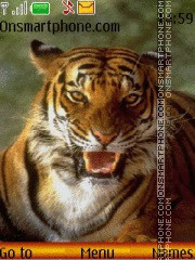 Tiger grin theme screenshot