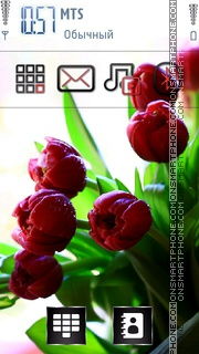 Red Tulips 01 theme screenshot