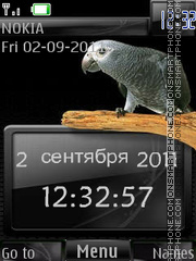 Parrots In Grey By ROMB39 Theme-Screenshot