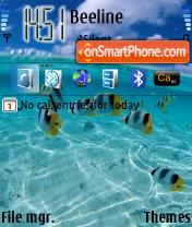Fish 01 theme screenshot