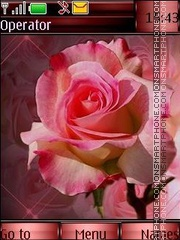 Pink roses theme screenshot