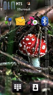 Hd Mushroom theme screenshot