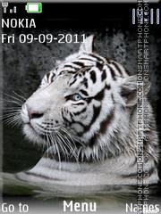 Tiger 43 theme screenshot