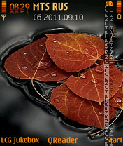 Leaves theme screenshot