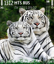 White-Tigers theme screenshot