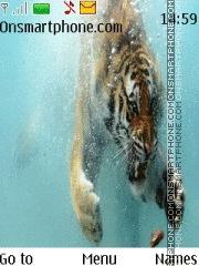 Tiger in water es el tema de pantalla