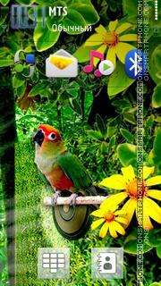 Parrot 3d theme screenshot