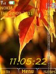 Скриншот темы Autumn leaves