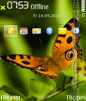 Butterfly 28 theme screenshot