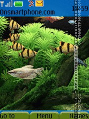 Aquarium theme screenshot
