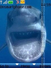 Скриншот темы Shark