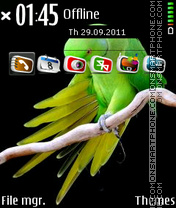 Parrot 09 theme screenshot