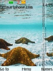 Скриншот темы Sea Beautiful