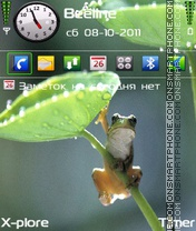 Frog tema screenshot