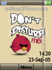 Скриншот темы Angry Birds Dont Disturb Me