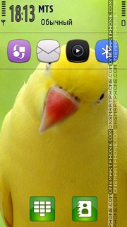 Yellow Parrot Theme-Screenshot