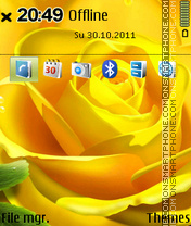 Yellow Rose 03 theme screenshot