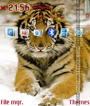 Tiger 48 theme screenshot
