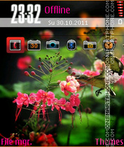 Flowers And Bird theme screenshot