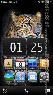 Leopard 07 theme screenshot