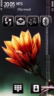 Скриншот темы Flower 5th