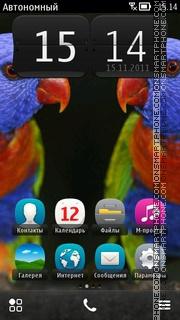 Colorful Parrots theme screenshot