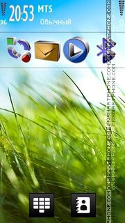 Green Grass Hd theme screenshot