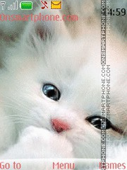 Cute Kitty 08 es el tema de pantalla