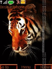 Tiger With Tone 02 tema screenshot