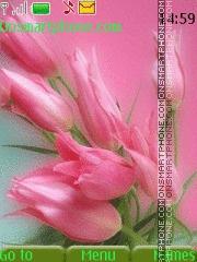 Pink Flowers 06 theme screenshot