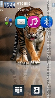 Tiger 49 theme screenshot