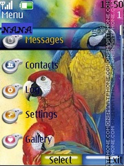 Parrots CLK theme screenshot