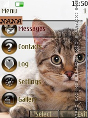 Cat CLK tema screenshot
