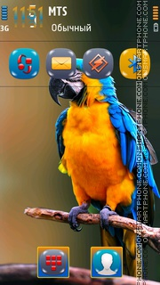 Parrot 10 theme screenshot