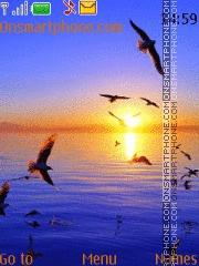 Sunset 23 theme screenshot