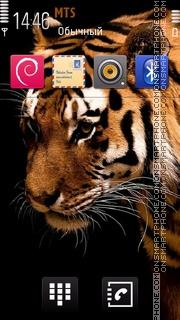 Tiger 50 theme screenshot