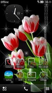 Tulips 10 theme screenshot