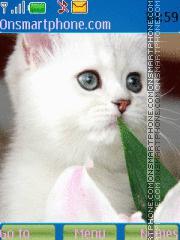 Скриншот темы Snow White Kitten